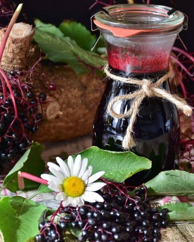 why-elderberries-are-excellent-for-your-health