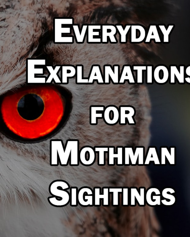what-is-mothman-really-possible-mundane-explanations-for-mothman-sightings