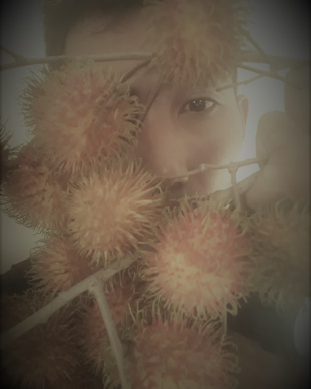 the-face-behind-rambutan-a-poem