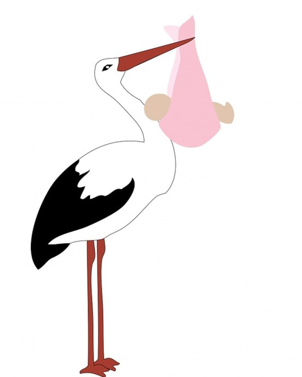 the-stork-brought-the-wrong-baby