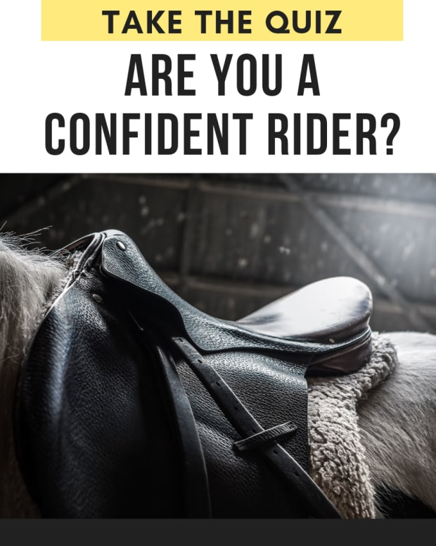 quiz-how-confident-of-a-rider-are-you