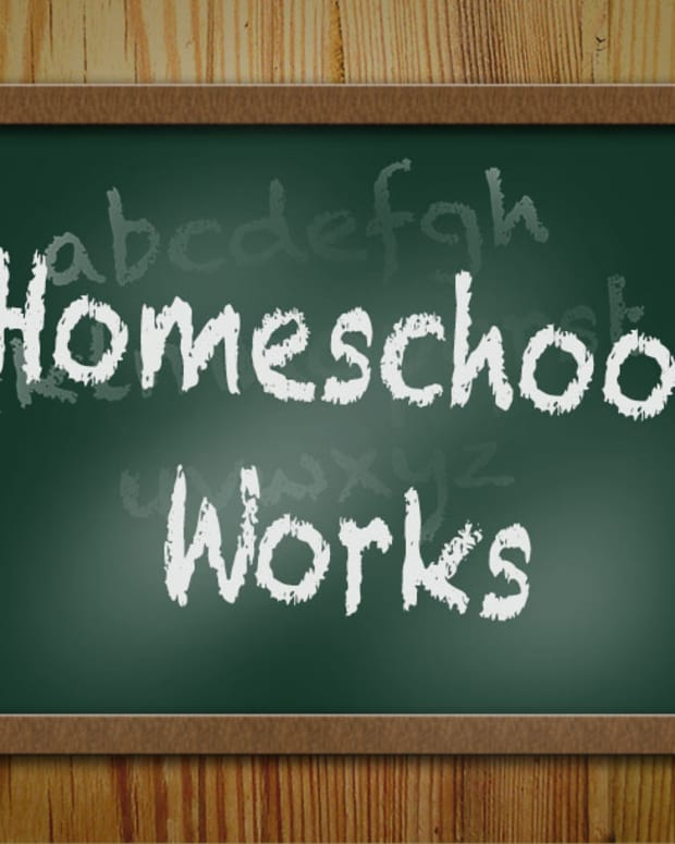 benefits-of-homeschooling-my-children-examined