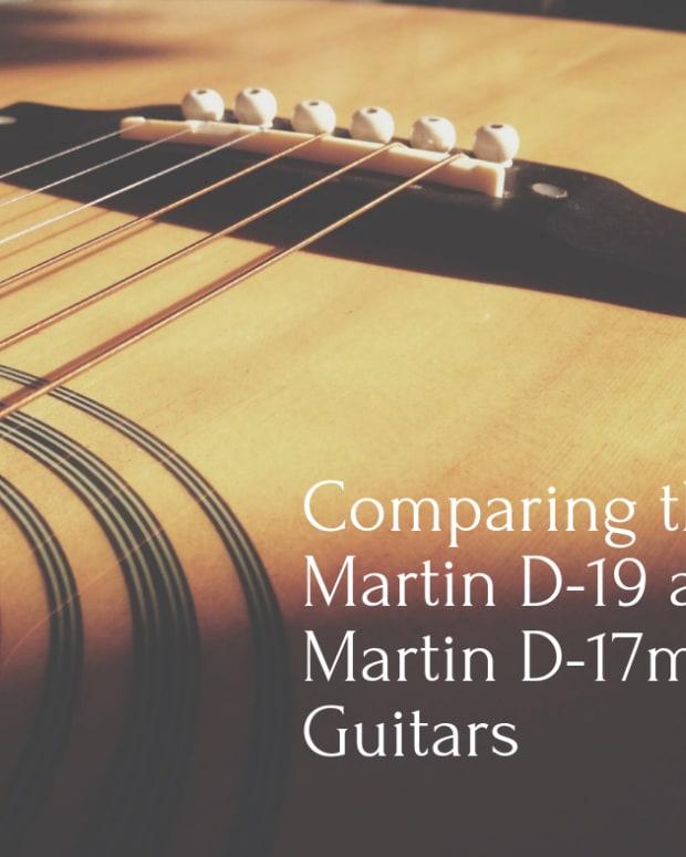 the-rare-martin-d-19