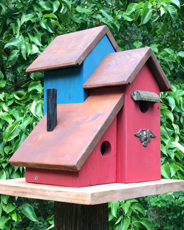 multi-family-birdhouse-plans-how-to-build-a-three-condo-birdhouse