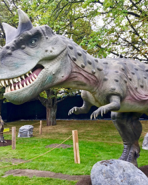 an-animatronic-dinosaur-display-and-facts-about-the-real-reptiles