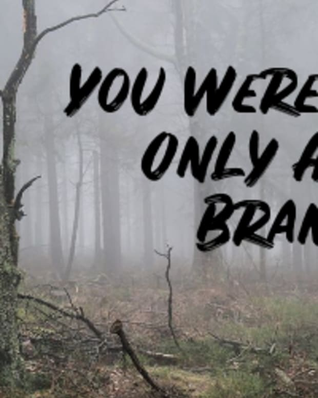 poem-you-were-only-a-branch