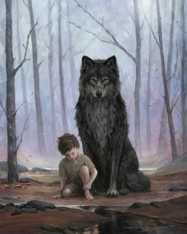 the-boy-with-the-wolf