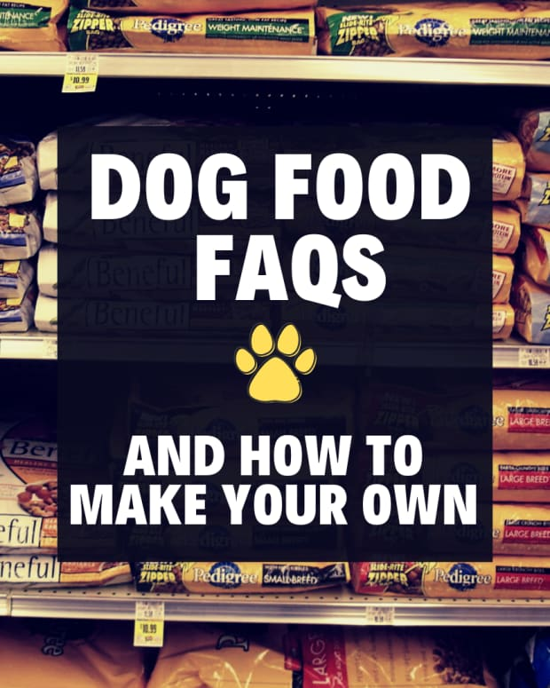 how-to-find-a-good-dog-food-or-make-your-own-dog-food