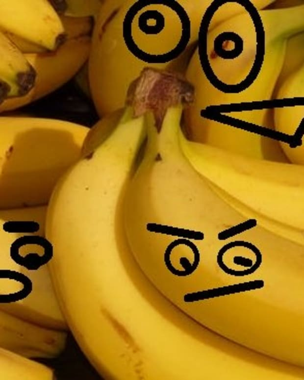 the-dysfunctional-lives-of-bananas