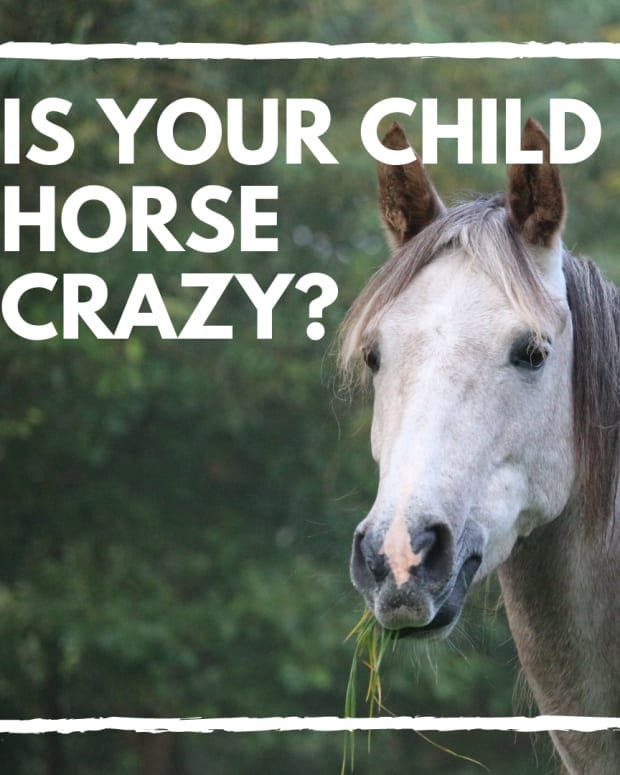 is-your-child-going-to-outgrow-the-horse-phase