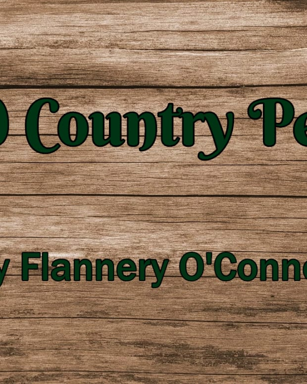 meaning-themes-summary-characters-questions-good-country-people-oconnor