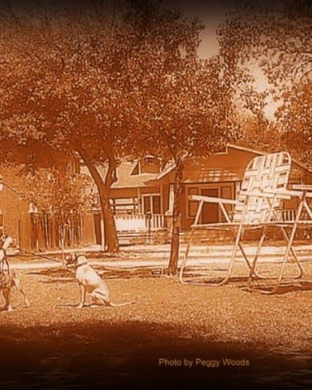 paul-kittelson-supersizes-aluminum-lawn-chairs