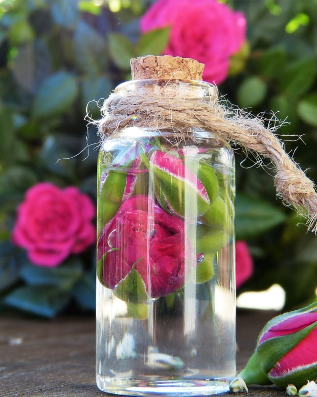 how-to-use-rose-water-diy-toner-spray