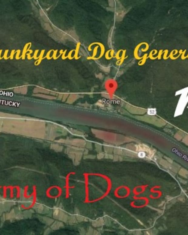 a-junkyard-dog-general-the-army-of-dogs-part-one