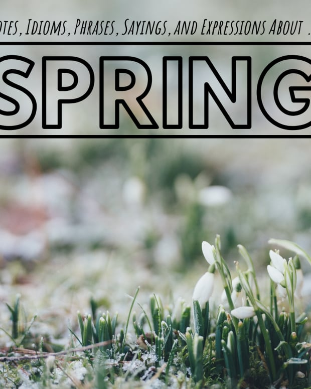 spring-idioms-and-adages