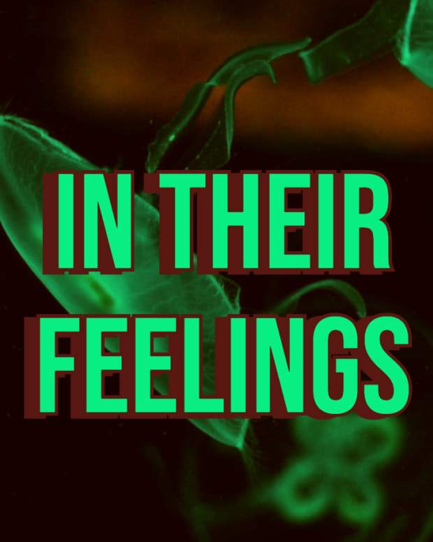 in-their-feelings