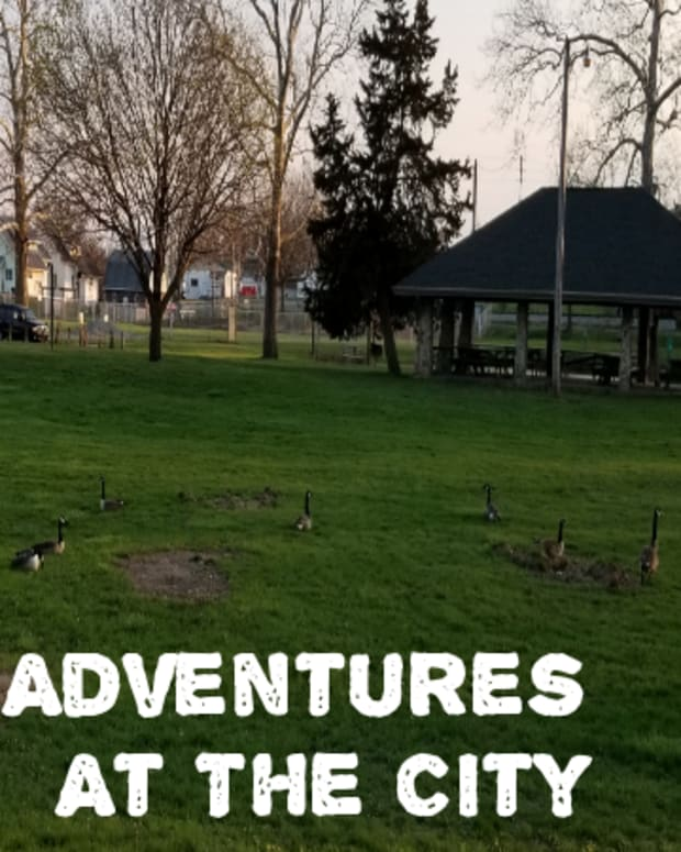 adventures-at-the-city-park