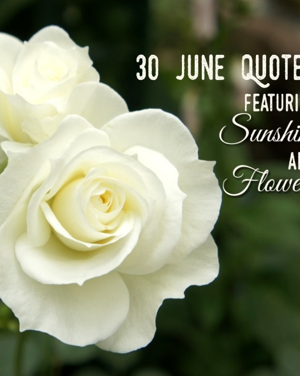 quotes-about-june-sunshine-and-flowers