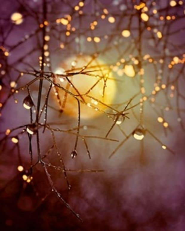 raindrops-of-memory