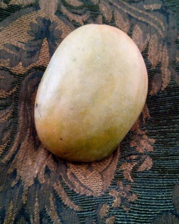 julie-mango