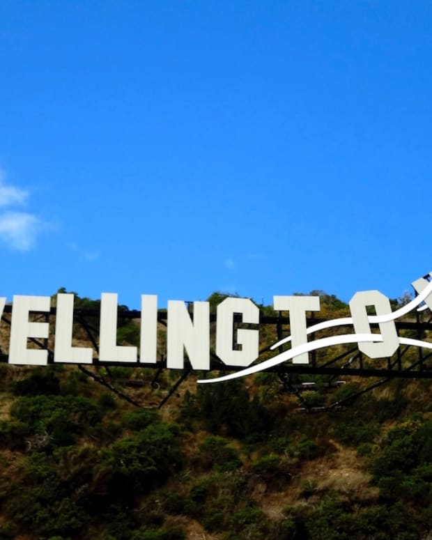 5-captivating-places-to-visit-in-wellington