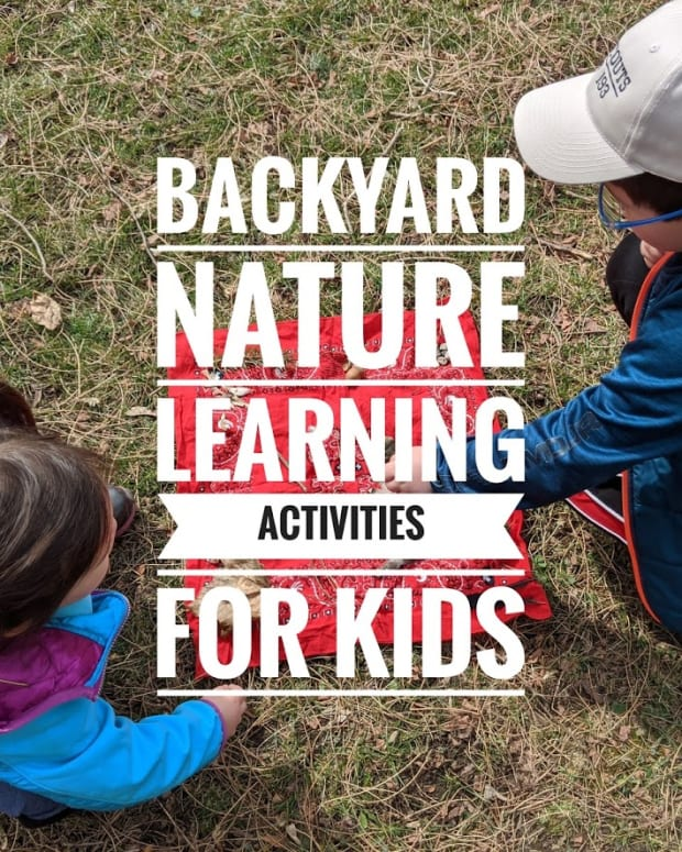 backyard-nature-learning-activities-for-kids