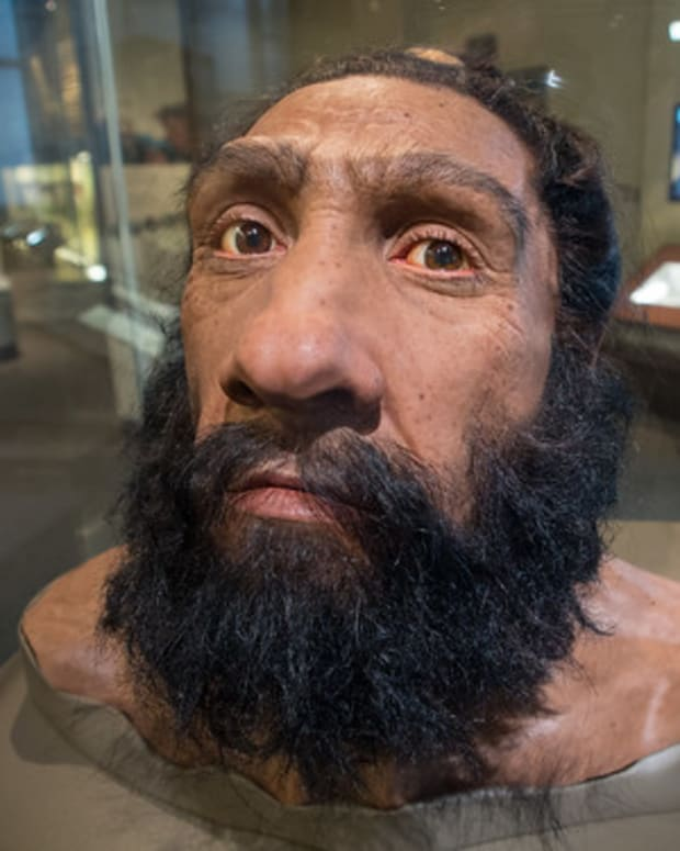 neanderthals-were-smarter-than-you-think
