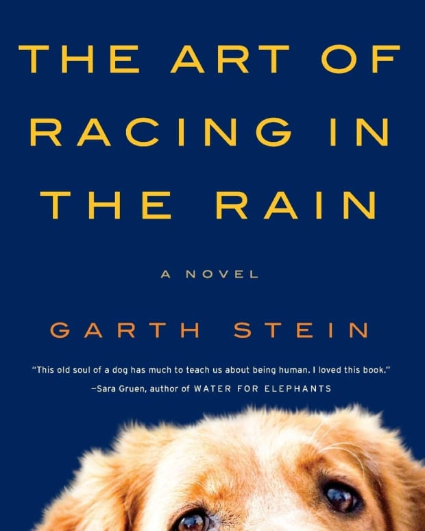 the-art-of-racing-in-the-rain-by-garth-stein-book-review