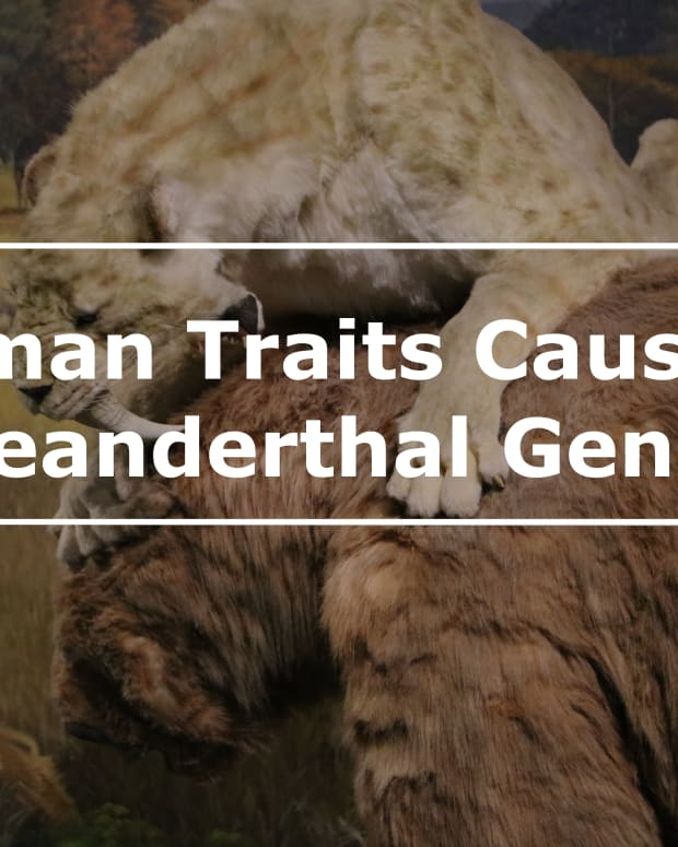 8-neanderthal-traits-in-modern-humans