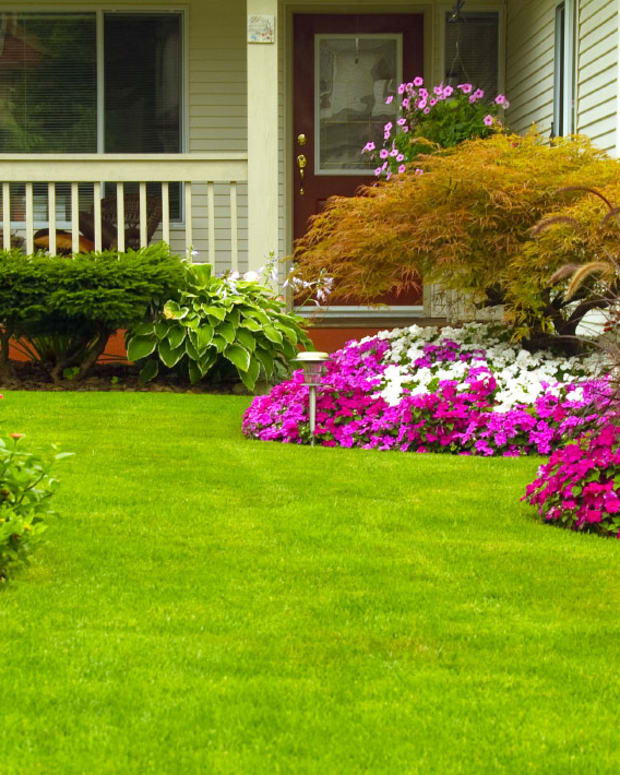 how-to-garden-more-in-less-time