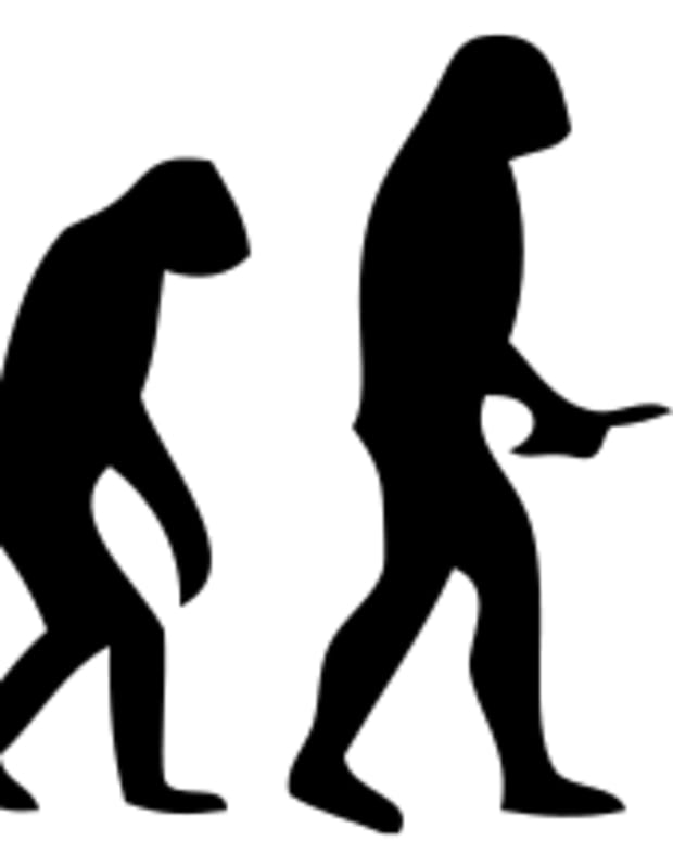 how-human-evolution-allowed-for-the-development-of-martial-arts