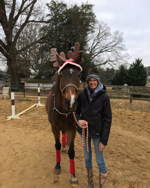 holiday-photos-with-your-horse