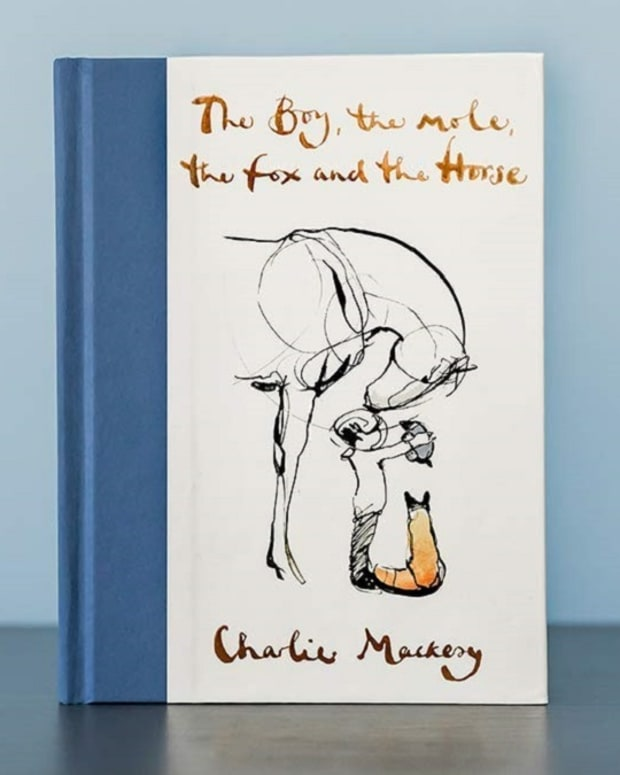 the-boy-the-mole-the-fox-and-the-horse-by-charlie-mackesy-review