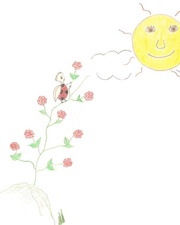 a-ladybugs-wisdom