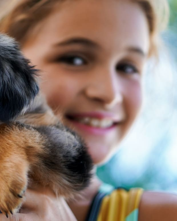 the-10-best-dogs-for-kids