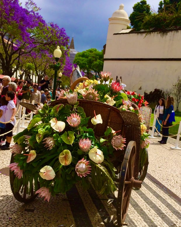 madeiras-wine-and-flower-festival-september