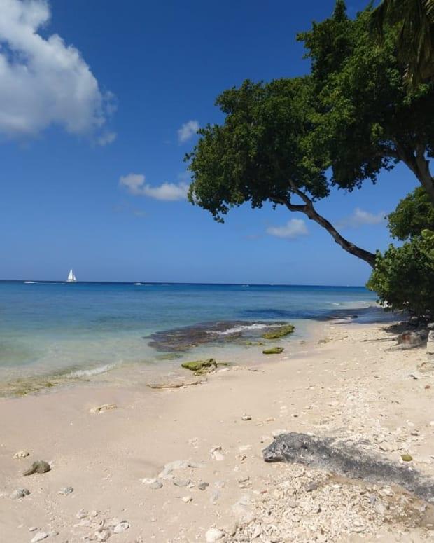 为什么 - 你应该是加勒比海