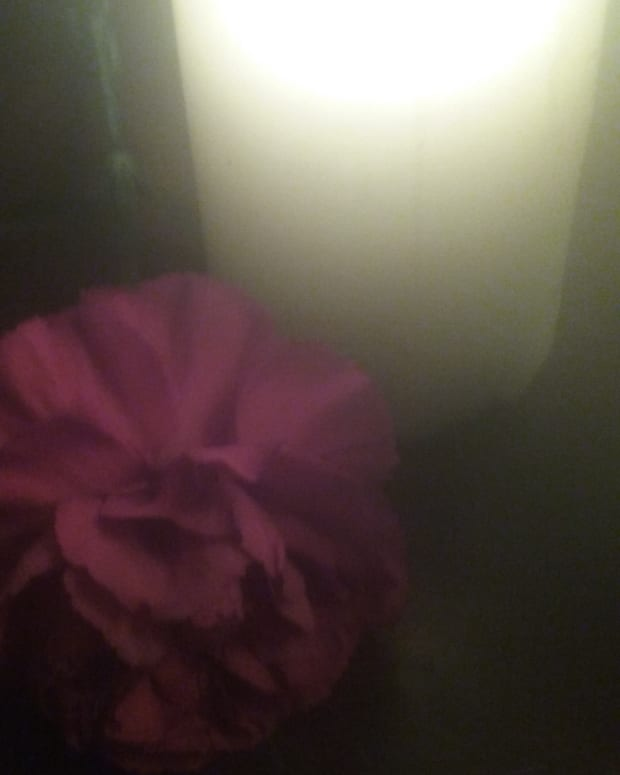 poem-please-shine-a-light-for-love