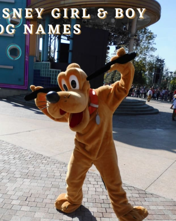 400-disney-girl-and-boy-dog-names-with-movie-origins