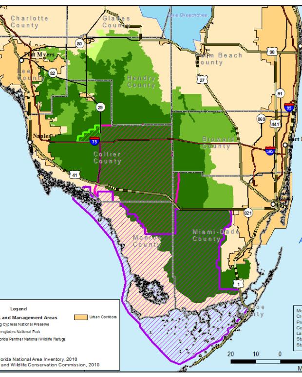 florida-panther-wildlife-refuge