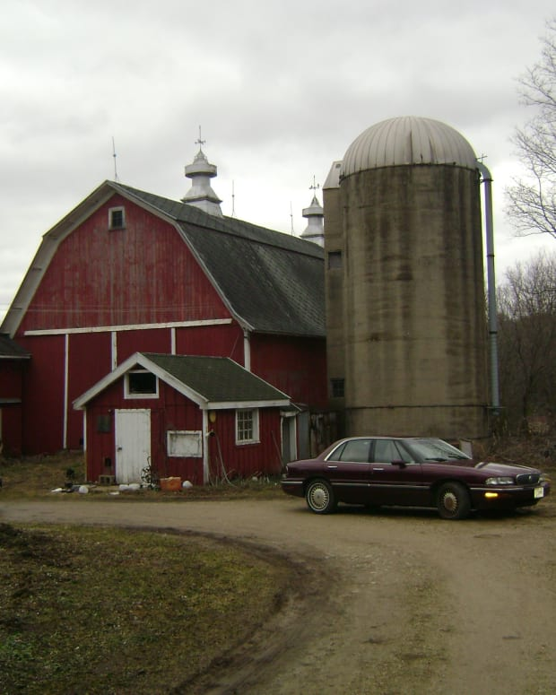 moral-lessons-learned-from-growing-up-on-a-farm