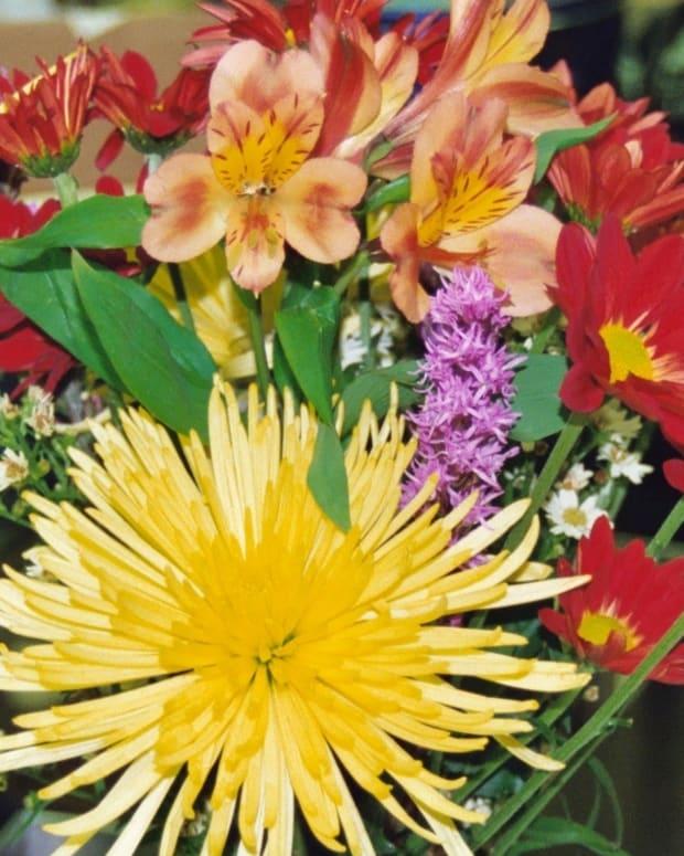 birthday-milestones-women-celebrating-blessings