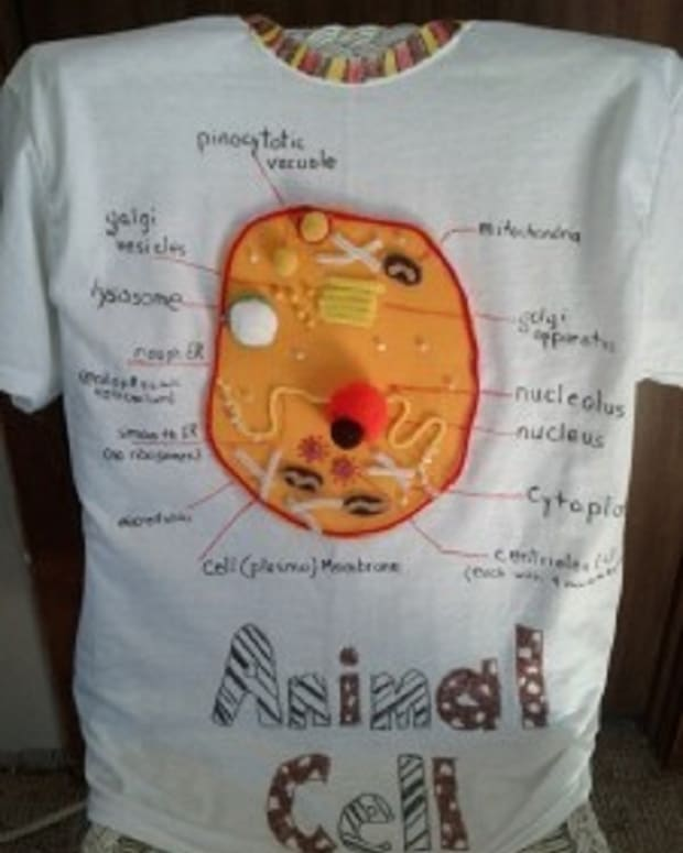 how-to-wear-your-animal-cell-project-to-school
