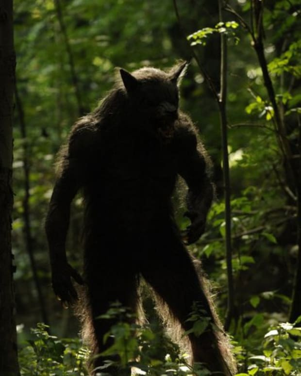 michigan-dogman-sightings-the-gable-film