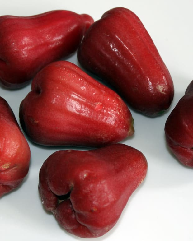 jambu-water-apple-bell-fruit-nutrition-and-health-benefits