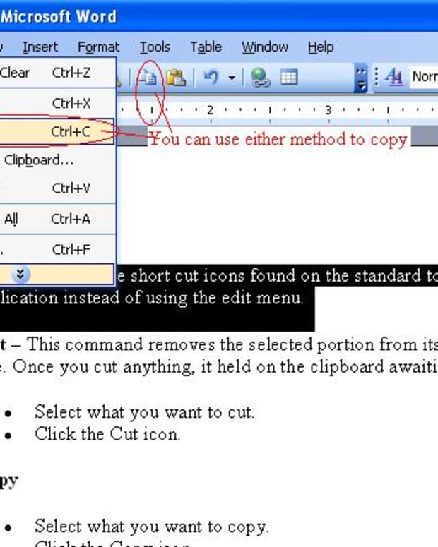 introduction-to-microsoft-word-using-the-cut-copy-and-paste-tools
