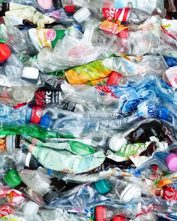 recycling-plastic-and-reducing-poverty-the-plastic-bank