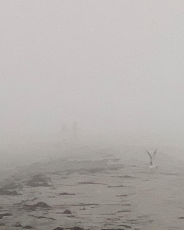 the-roaring-fog-a-poem