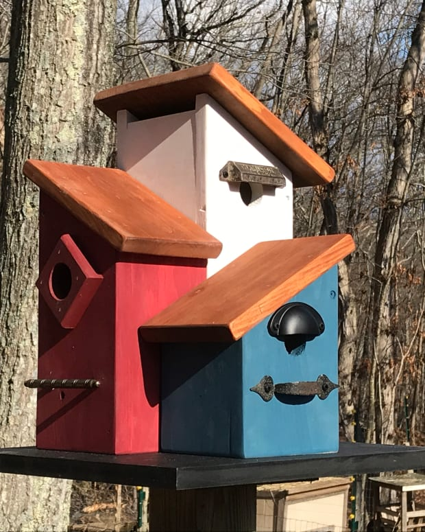 yard-art-birdhouse-how-to-build-a-multi-family-condo-birdhouse