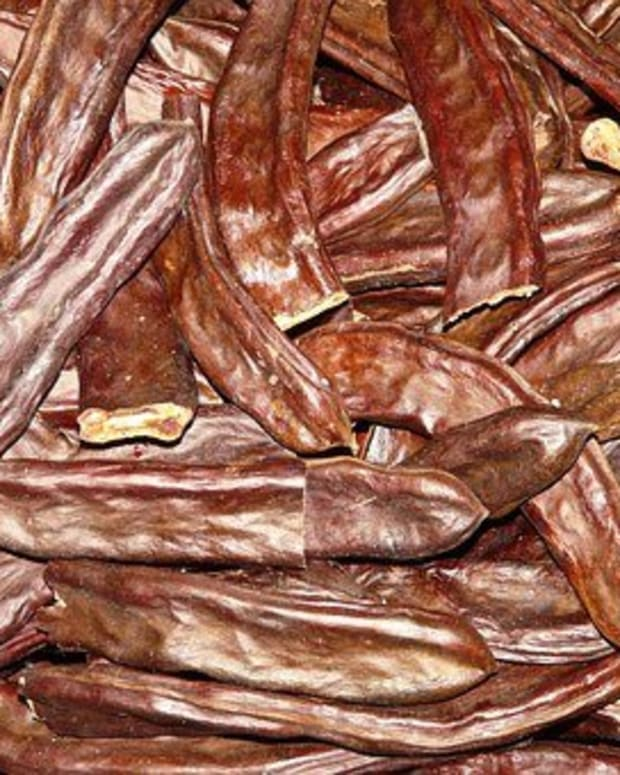 benefits-of-carob-fruit
